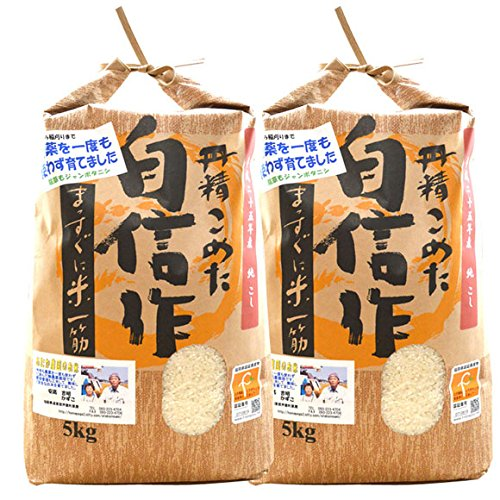 無農薬 玄米 新米 10kg コシヒカリ 令和元年産 福岡県産