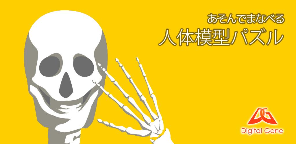 アプリで内臓や骨格の勉強「あそんでまなべる 人体模型パズル」