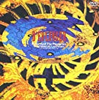 MOON AND THE MEMORIES…THE ETERNITIES/LAST LIVE VIDEO〈LAST LIVE AT HIBIYA-YAON/27,28th OCT.1990〉 [DVD](通常6~12日以内に発送)