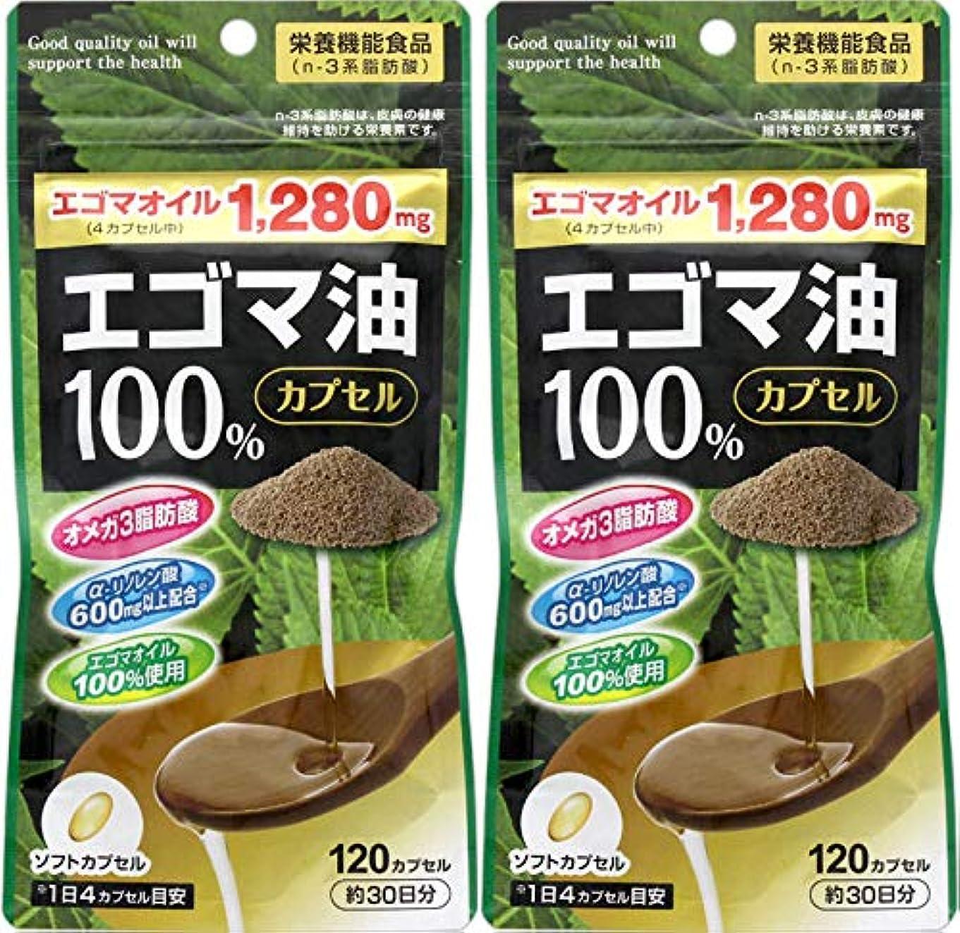 草現在司法【2個セット】エゴマ油100%カプセル 120カプセル
