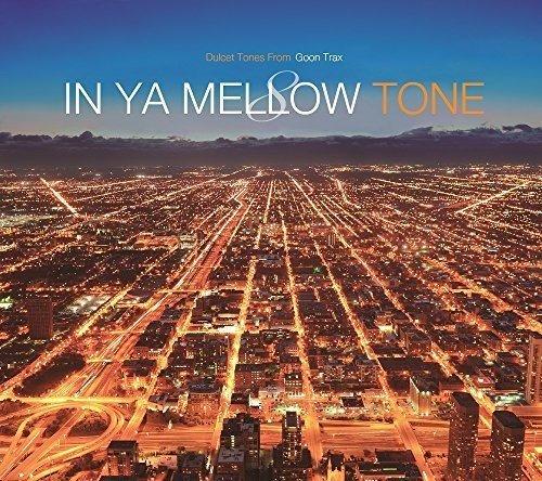 IN YA MELLOW TONE 8 GOON TRAX 10th Anniversary Editionの詳細を見る