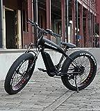 kintone E-クルーザー 電動ファットバイク 26インチ シマノ21段変速モデル 説明書付き 電子部品