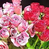 フラワーマルシェ バラ 福袋 Sサイズ ( 花束 風 )