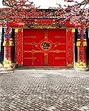 aofoto 8?x 10ft中国春節写真Studioバックドロップ新しい年フロントドア装飾couplet Firecrackersレッドランタン背景大人Kid芸術的肖像写真の撮影小道具ドレープ