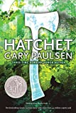 Hatchet (Brian's Saga Book 1) (English Edition)