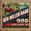 CHOKE CHERRY TREE [LP] (DOWNLOAD)[12 inch Analog]