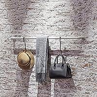 LXSnail 衣料品店のディスプレイラック、LOFTレトロ工業風水パイプハンガー、リビングルーム鍛造壁掛け衣類ラック コートラック (サイズ さいず : L80*W10CM)