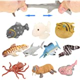 Ocean Sea Animal10 Pack Rubber Bath Toy SetFood Grade Material TPR Super Stretchy Some Kinds Can Change ColourValeforToy Squi