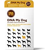 DNA MY Dog - Canine Breed Identification Test Kit - at-Home Cheek Swab Kit - Personality Traits by DNA My Dog