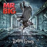 Mr Big<br />Defying Gravity