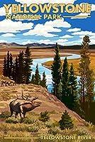 イエローストーン国立公園–イエローストーン川とElk 16 x 24 Giclee Print LANT-48337-16x24