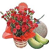 母の日 ギフト カーネーション 鉢植え 5号鉢 レッド と つる付き アールス メロン セット プレゼント 用 ギフト ボックスでお届け