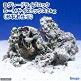 (海水魚)Bグレードライブロック S-Mサイズミックス(2kg)(形状お任せ) 本州・四国限定[生体]