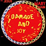 Damage & Joy