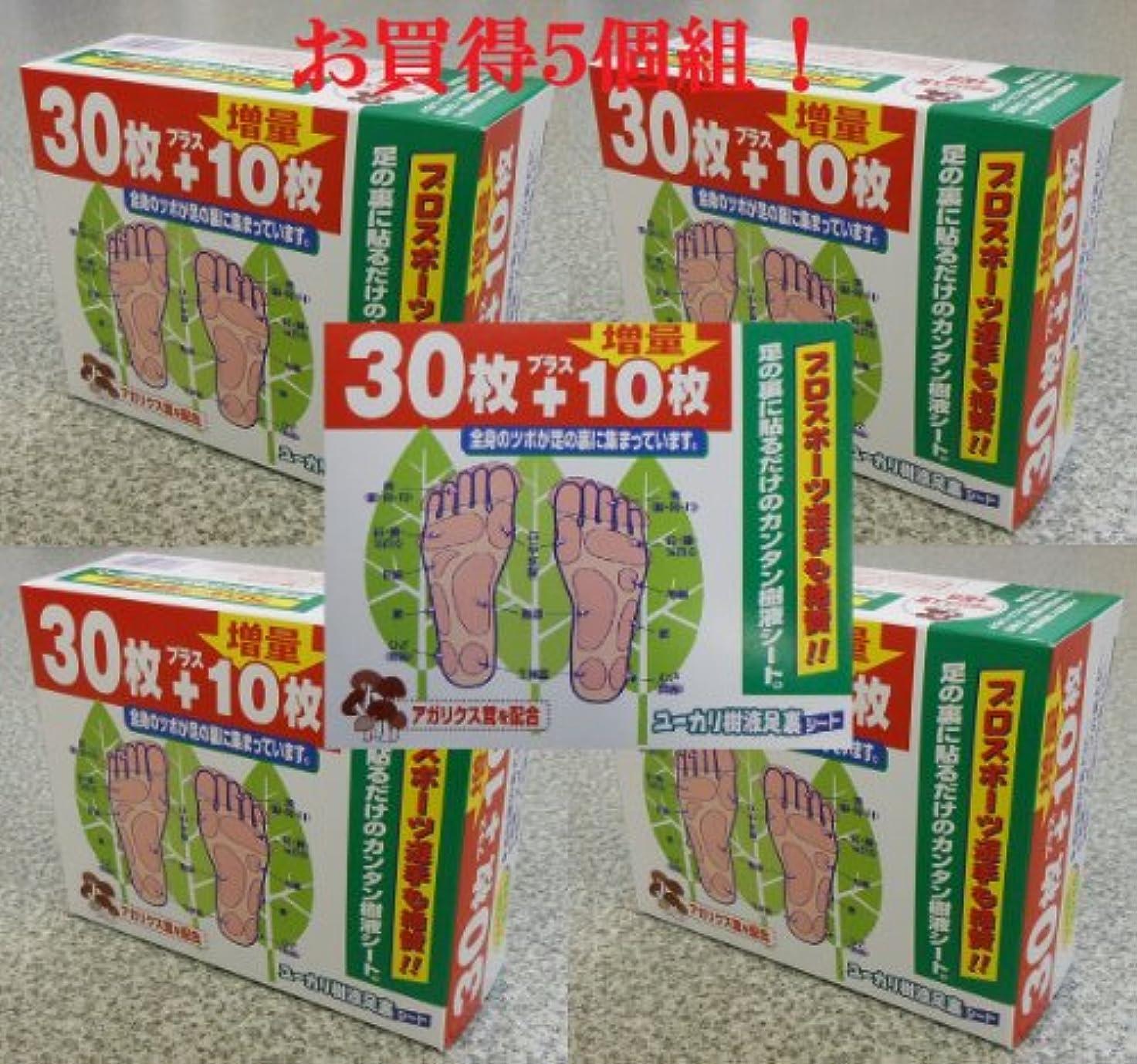 食料品店報酬のワーカーユーカリ樹液足裏シート アガリクス茸配合 5個組