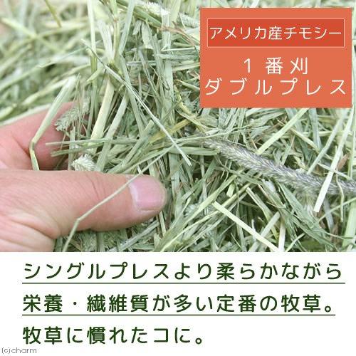 平成28年産 アメリカ産チモシー 1番刈 ダブルプレス チャック袋 500g×6袋(3kg) 牧草 うさぎ 小動物 牧草