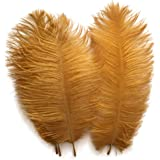 Shekyeon Gold 10-12inch 25-30cm Ostrich Feather Home Decoration DIY Craft Pack of 10
