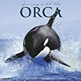 Orca (Journy With The) 2019 Calendar