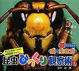 昆虫びっくり観察術〈1〉顔からみえる虫の生き方 (すごいのみーっけ!自然観察ブック)