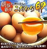 朝採り新鮮野口さんのこだわり卵40個(破損保証10個含む)