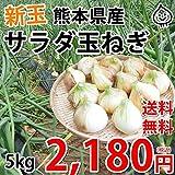 玉ねぎ サラダ玉ねぎ 送料無料 新玉 5kg S~L 熊本県産 玉葱 たまねぎ 野菜