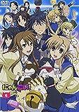 にゃんこい! 6 (DVD 初回限定版)
