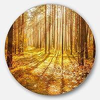DesignArt mt13944 C11 Bright Sunlight黄色でFallフォレストモダンフォレスト円壁アートディスク、11インチx 11インチ、イエロー