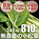 無農薬・無化学肥料の小松菜 1袋1kg