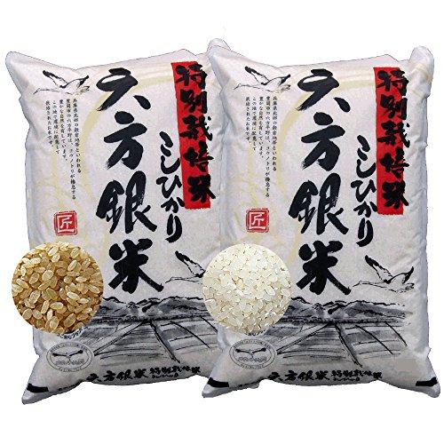 玄米5kg 7分づき5kg お試しセット こしひかり 六方銀...