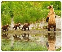 (マウスパッド)自然動物アラスカ湖ヒグマドキュメンタリーカスタマイズされた長方形マウスパッド、ゲームマウスパッドマウスマット販売元Yanteng