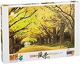 1000ピース ジグソーパズル めざせパズルの達人 黄金色の散歩道 東京(50x75cm)