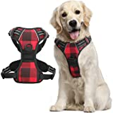 rabbitgoo Dog Harness, No-Pull Pet Harness with 2 Leash Clips, Adjustable Soft Padded Dog Vest, Reflective No-Choke Pet Oxfor