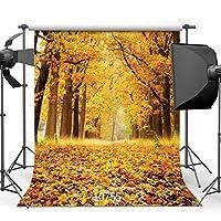 GooEoo 8 x 8フィート秋の背景美しい自然の風光明媚な写真の背景結婚式の生まれたばかりの子供の背景10755