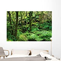 Temperate Rain Forest Australias Wall Mural by Wallmonkeys Peel and Stick Graphic (72 in W x 48 in H) WM248184 [並行輸入品]