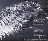 BEST OF THE BEST vol.1 ―WILD― (ALBUM+DVD) 画像