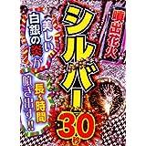 【噴水花火】シルバー30(長噴出30)
