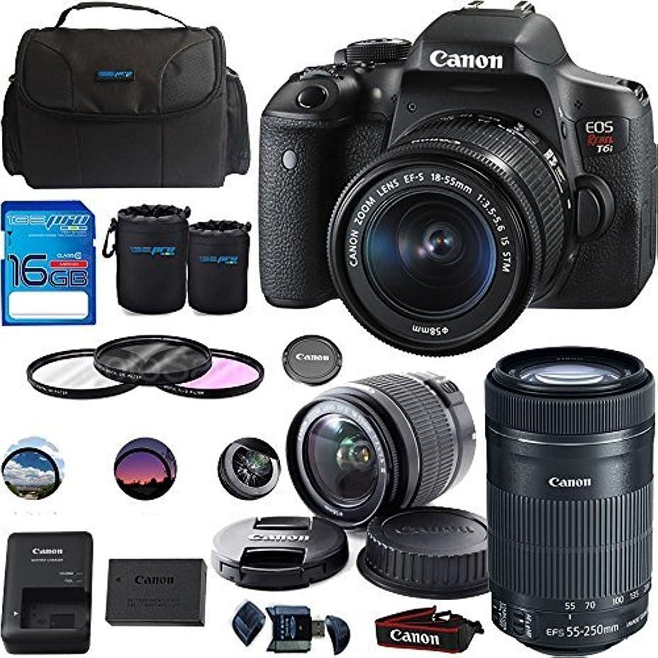 めまいがアイデアゆるいCanon EOS Rebel T6i DSLR Camera with EF-S 18-55mm f/3.5-5.6 IS STM Lens + EF-S 55-250mm f/4-5.6 IS STM Lens - Deal-Expo Bundle [並行輸入品]
