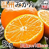 みかん 5kg 送料無料 温州みかん 秀品 熊本県産 3箱購入で1箱おまけ 蜜柑 ミカン