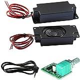 Degraw DIY Speaker Kit - PAM8403 5V Amplifier + 2Pcs 4 ohm, 3 watt Speakers - Mini Class D Digital Audio Amplifier amp Board