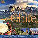 南米チリの美しい歌 (Beautiful Songs of Chile) [Import CD from UK] / Conjunto Folclorico Danzamerica De Chile (CD - 2010)