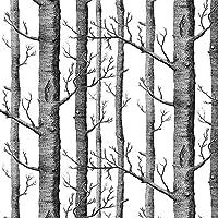 AkeaモダンBirchツリー壁紙ロール、ブラックとホワイトフォレストトランク、リビングルーム、ベッドルーム、テレビ背景など、サイズ20.8インチx 32.8Ft、57平方フィート
