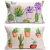 Fukeen Set of 2 Cactus Pillow Cases Tropical Succulent Plant Pots Waist LumbarThrow PillowCover Rectangle 12x20 Inch Spring