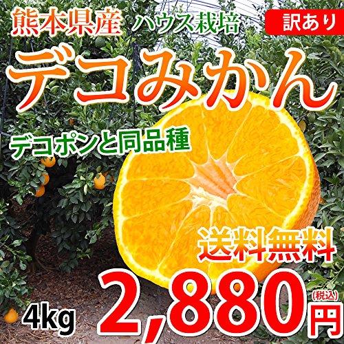 訳あり デコみかん 4kg 熊本県産 デコポン 同品種 不知火 ハウス栽培 送料無料 おまけ有り みかん ミカン 蜜柑