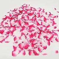 Doutop フラワーシャワー 造花 花びら バラ 花弁 薔薇 結婚式 誕生日 ウエディング パーティー 飾り クリスマス 二次会 演出 小物 グッズ お祝い 撮影 1000枚セット カラフル シルク 10色 ピンク グラデーション