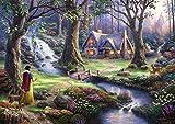 西洋絵画 ディズニー 白雪姫 42x30cm Snow White トーマスキンケード [並行輸入品]