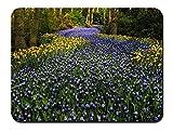 オランダ、キューケンホフ公園、ヒヤシンスの花、チューリップ、木 パターンカスタムの マウスパッド 旅行 風景 景色 (26cmx21cm)