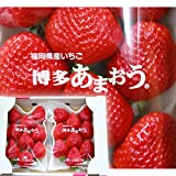 【 福岡県産 】 あまおう いちご 苺 2パック入り