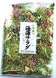海藻問屋 海藻サラダ ( 塩蔵 ) 300g 国産 色物海藻とワカメ類 生のまま塩蔵の商品画像