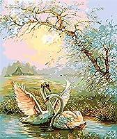 数字でDiy油絵、数字キットでペイント - 動物2つの白い白鳥の川16 * 20インチリネンキャンバス - 大人のためのデジタル油絵壁アートアートワーク上級子供高齢者後輩