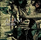 「ADAM」(TYPE-C)(通常1~2か月以内に発送)